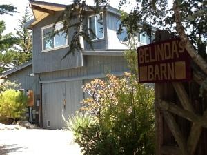Welcome to Belinda's Barn